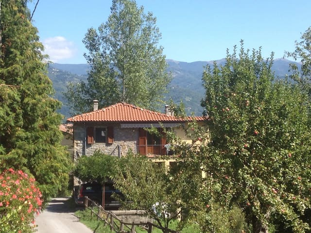 Charming apartment in rural Tuscany - Camporgiano - Apartment
