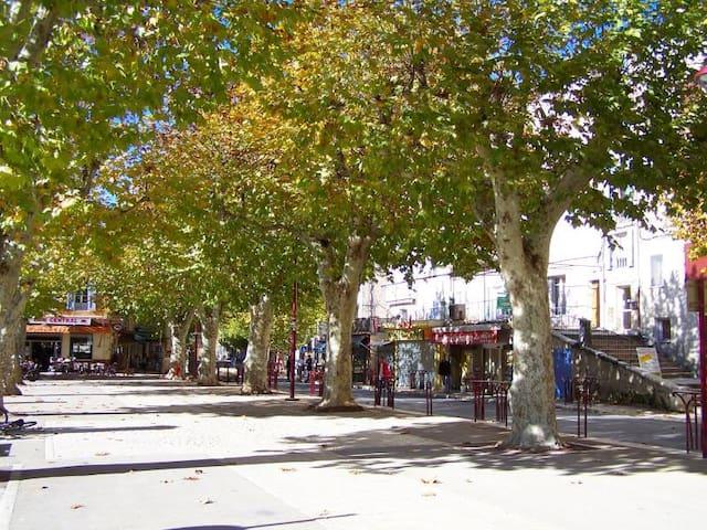 2 P en plein coeur de la Provence - Riez - Apartment