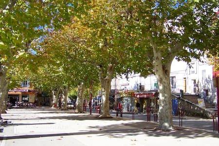 2 P en plein coeur de la Provence - Riez