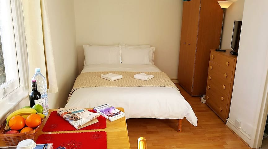 Excellent studio, close to all tourist attraction! - London - Apartment