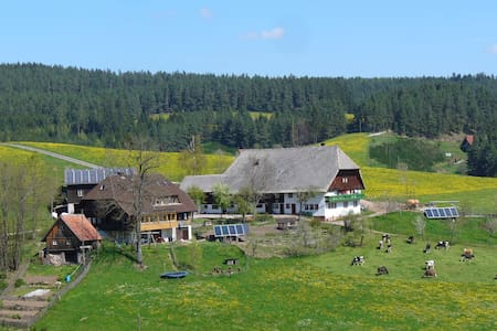 Holidays on our farm in the Black Forest - Apartamento