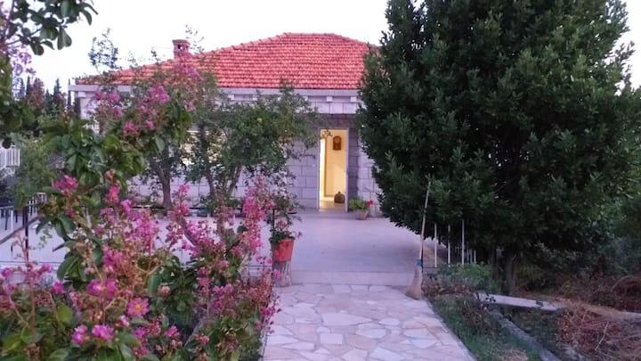 Villa Mare Jabuka