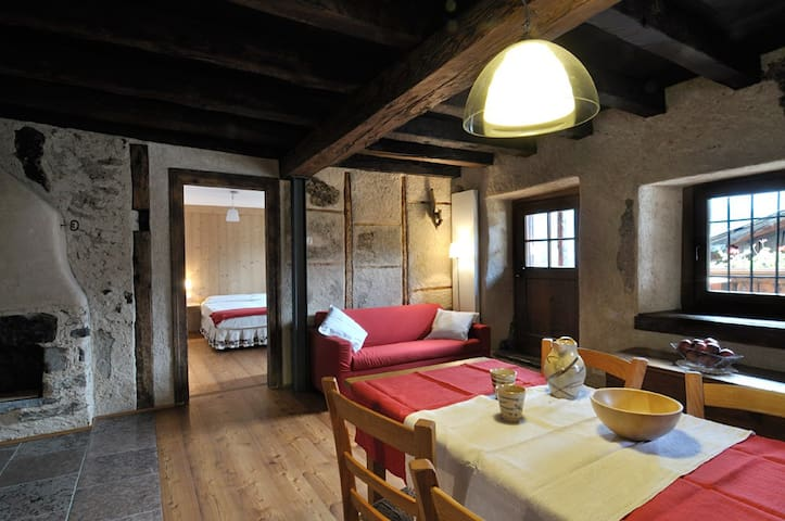 Typical house in Dolomites, Birot1 - Fornesighe