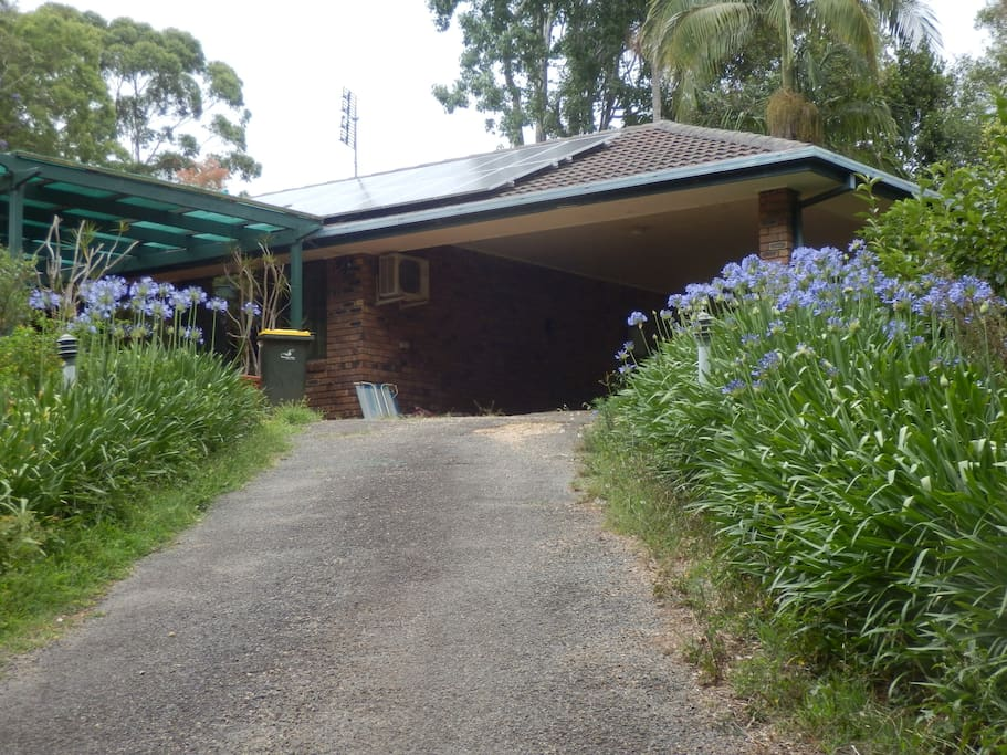 Agapanthus driveway and carport