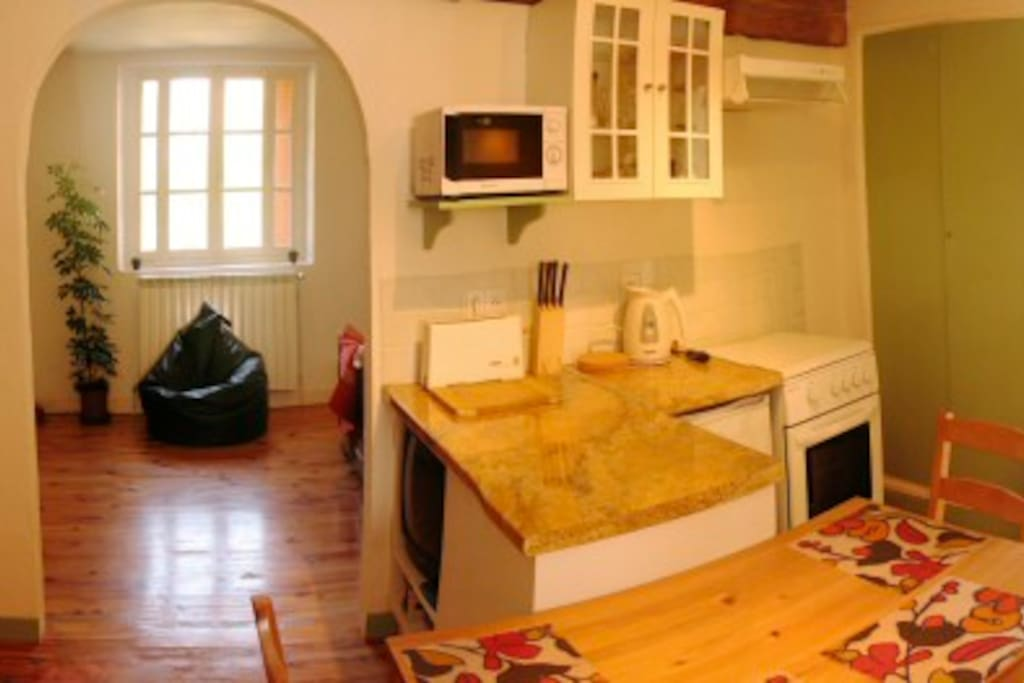 Lezard living area