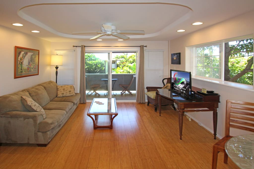 Living Room has air conditioner, couch, coffee table, chair, TV with DVD player.