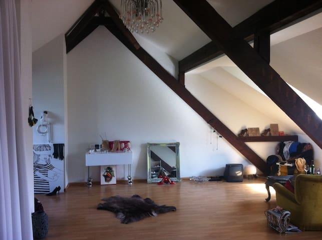 Loft to rent next to Art Basel
