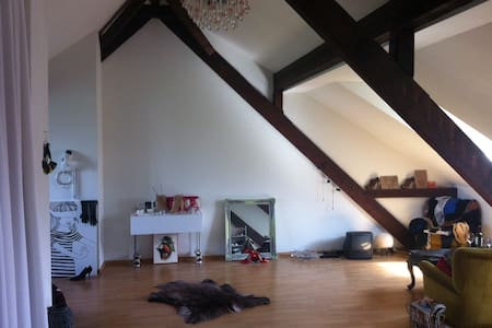 Loft to rent next to Art Basel - Basel