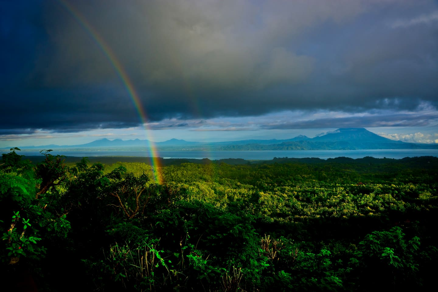Bali and Rainbow from Glass House Bedroom