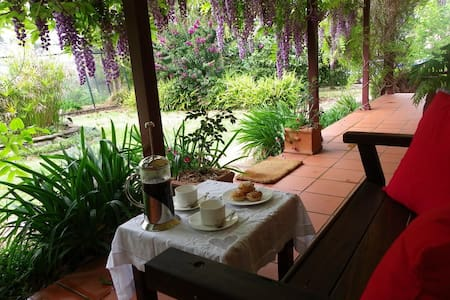 Wisteria B&B Cottage, Bellingen NSW - Bellingen