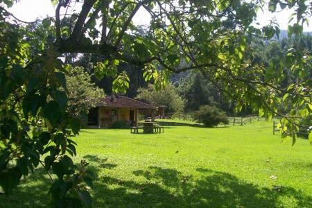 Descanso e exuberância no Vale das Flores. - Río de Janeiro
