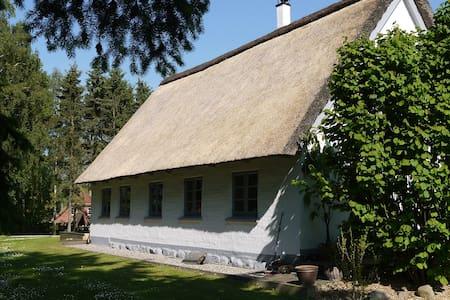 Wunderschönes Reetdachhaus - Ahrensbök - Huis