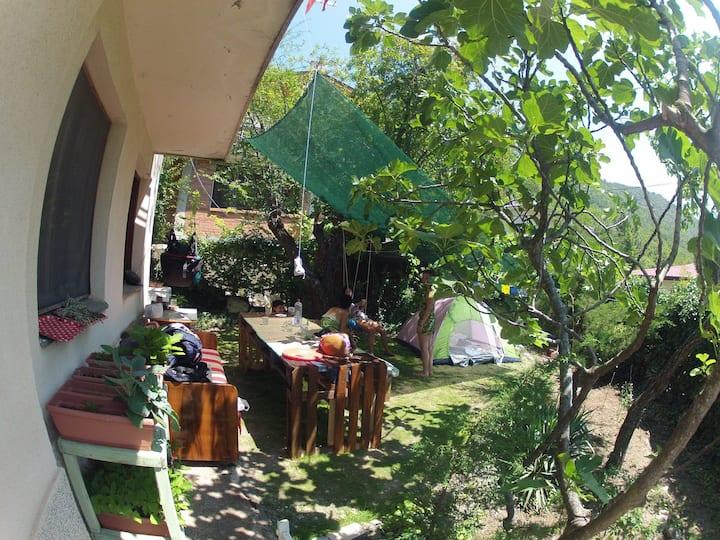 IKAR hut / Tent space in the green garden