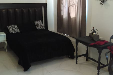 NEW!! Apartment Executive Private 1 Bed / CENTRO - Chihuahua - Lejlighed
