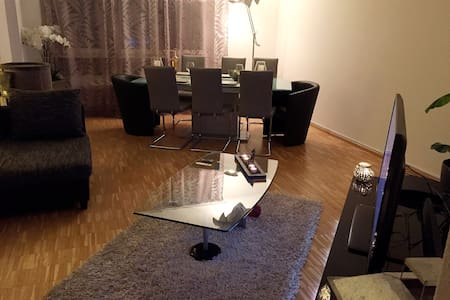 Beautiful apartment nearby Basel - Huoneisto