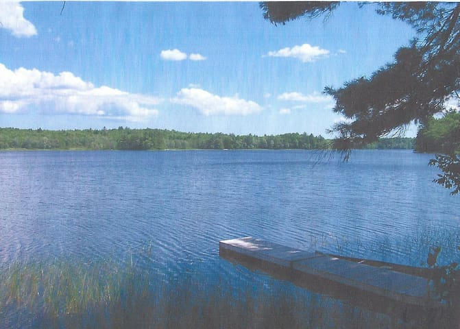 Waterside Cabin the Woods 50 acres  - Nobleboro - Cabin
