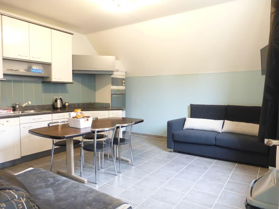 Grand salon avec cuisine intégrée