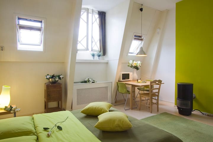 Green studio at the attic of a townhouse