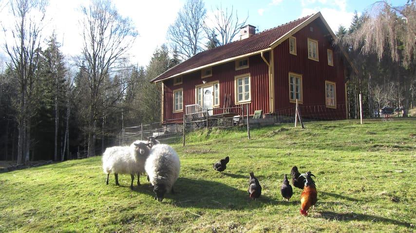 Hagås - Alingsås S - House