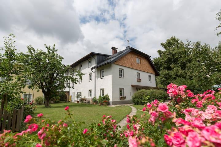 Mozart Apartments Salzburg ELVIRA