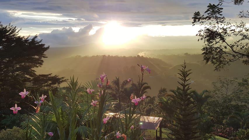 Best Sunset/Birdwatch at Buena Vista1 -near Volcan