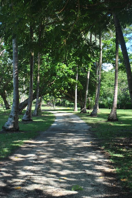 Driveway thru 5 acres manicured land to your accom.