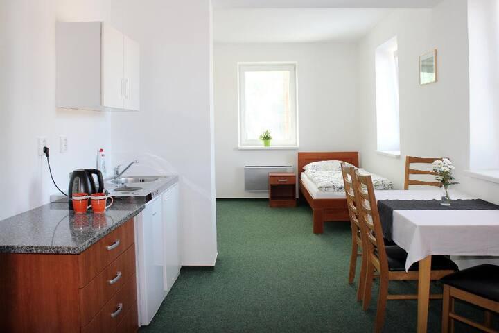 Třílůžkový pokoj s koupelnou a kuchyňským boxem