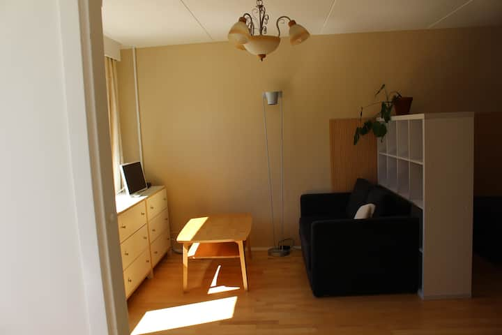 Spacious and light one room apartment