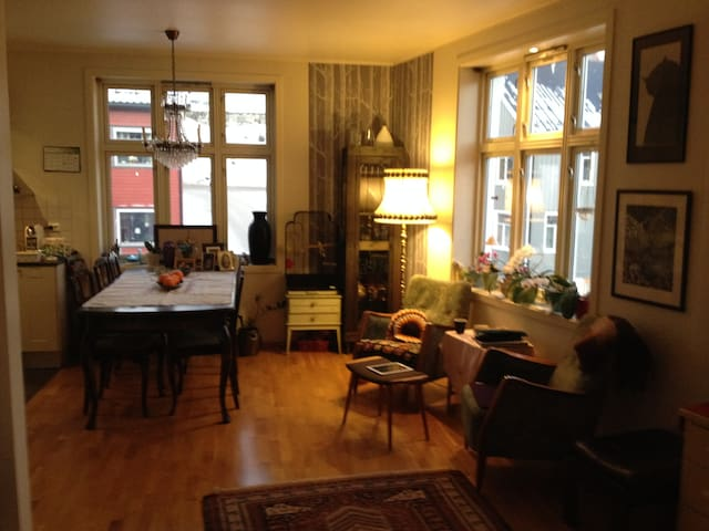 Flat/ room in the City centre - Tromsø - Appartement