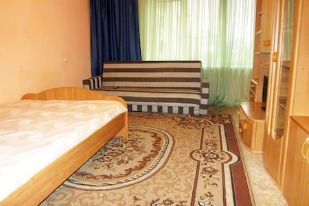 Отличная квартира на Ленина 24 - Krasnoyarsk