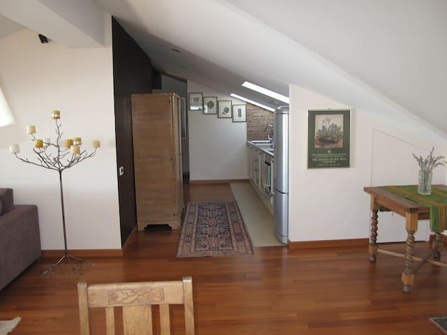 kitchen in open space
