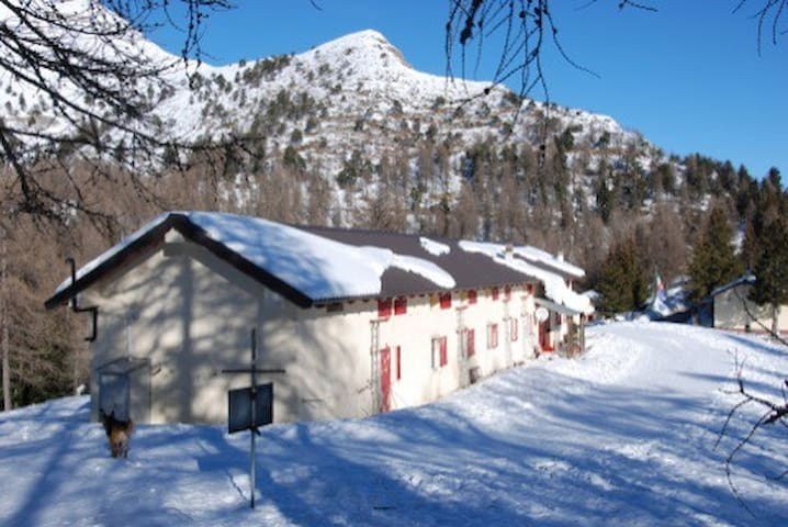 a piece of paradise in the alps - Pigna - Bed & Breakfast