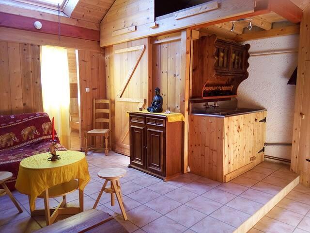 Studio en campagne à 30mn de Genève et Annecy - Le Sappey - บ้าน