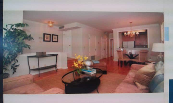 Luxury 1 br Condo near Stanford