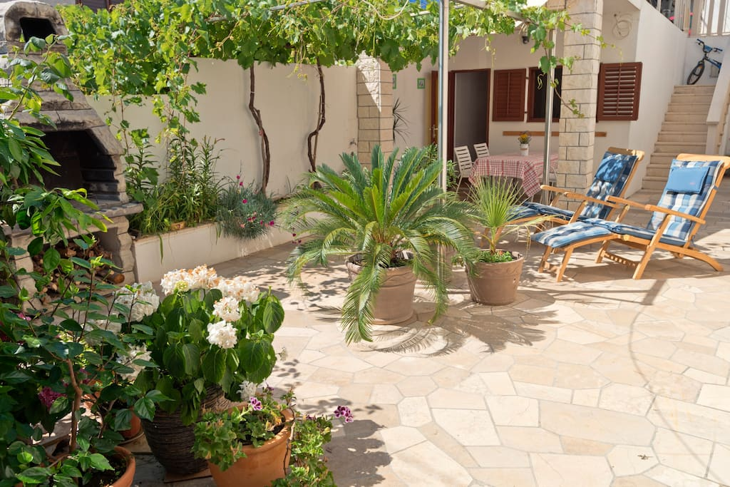 garden terrace with nice deckchairs, grapes