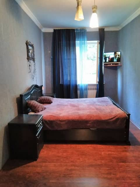 Apartment in Borjomi