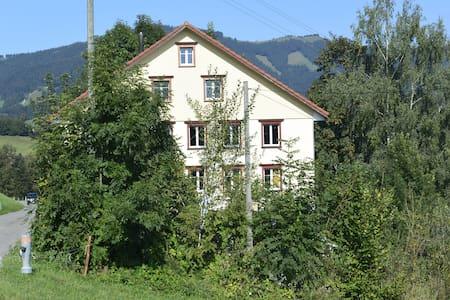 Helle Dachwohnung im Goldingertal - Goldingen - Appartement