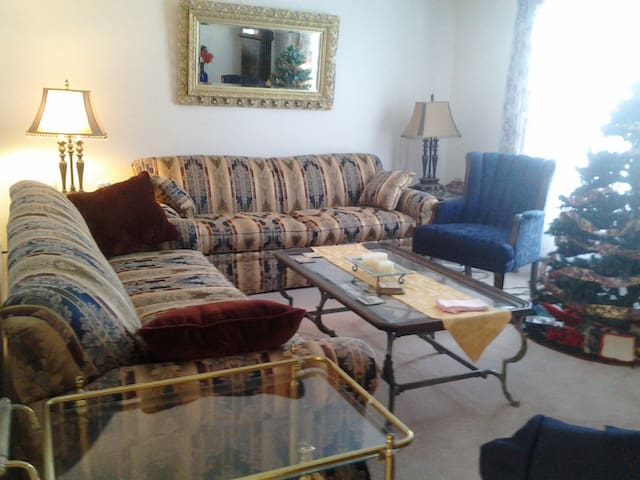Couches In Rochester - Rochester - House