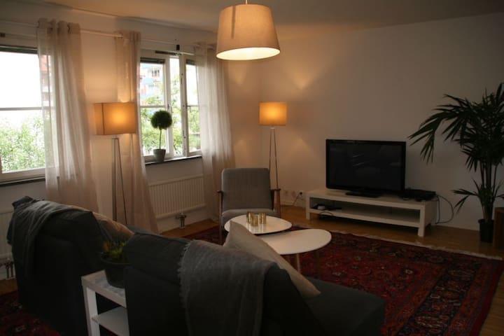 Nyrenoverad stor lägenhet i perfekt läge. - Уппсала - Квартира