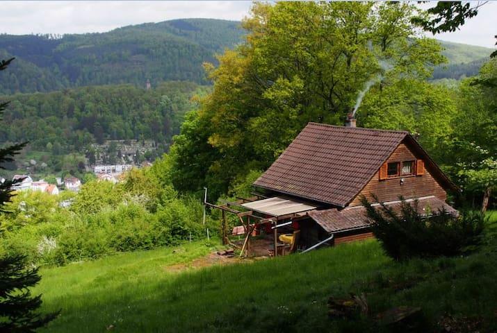 Urige Almhütte & Künstler Atelier im Odenwald - Eberbach - 오두막