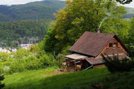 Urige Almhütte & Künstler Atelier im Odenwald - Eberbach