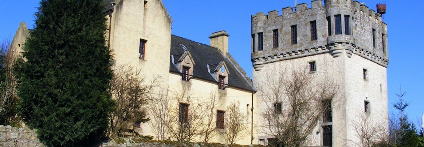 14th Century Plane Castle
