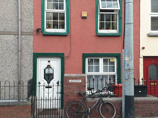Single cosy room in Historic house adjacent to UCC