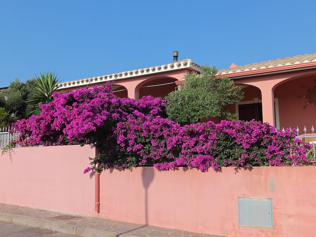 Pink house few steps from the sea - Calasetta