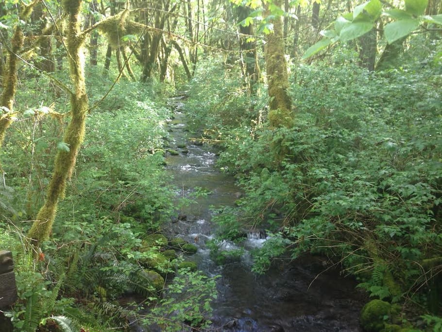 The year-round salmon stream we have created new spawning habitat in.