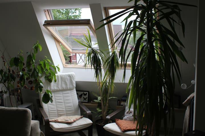 Мансарда в прибрежном городе - Pionerskiy - 公寓