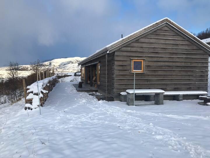 Ål i Buskerud/Bergsjø - arkitekttegnet hytte