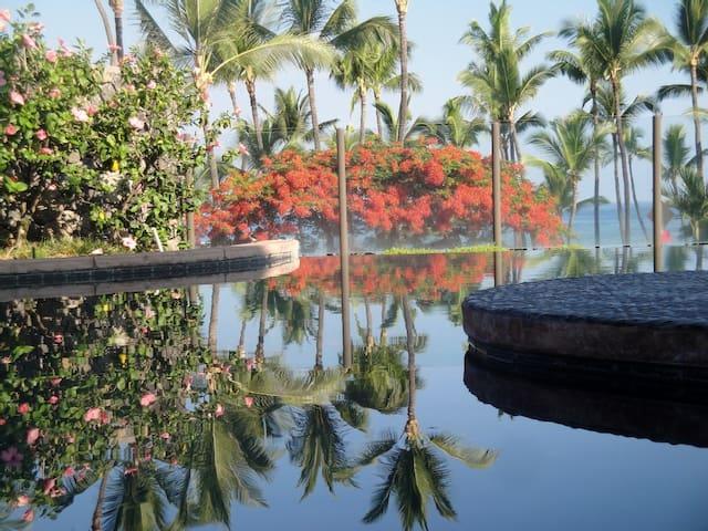 Ahhh...Paradise Kona Condo Snorkel,Surf,OCEAN VIEW