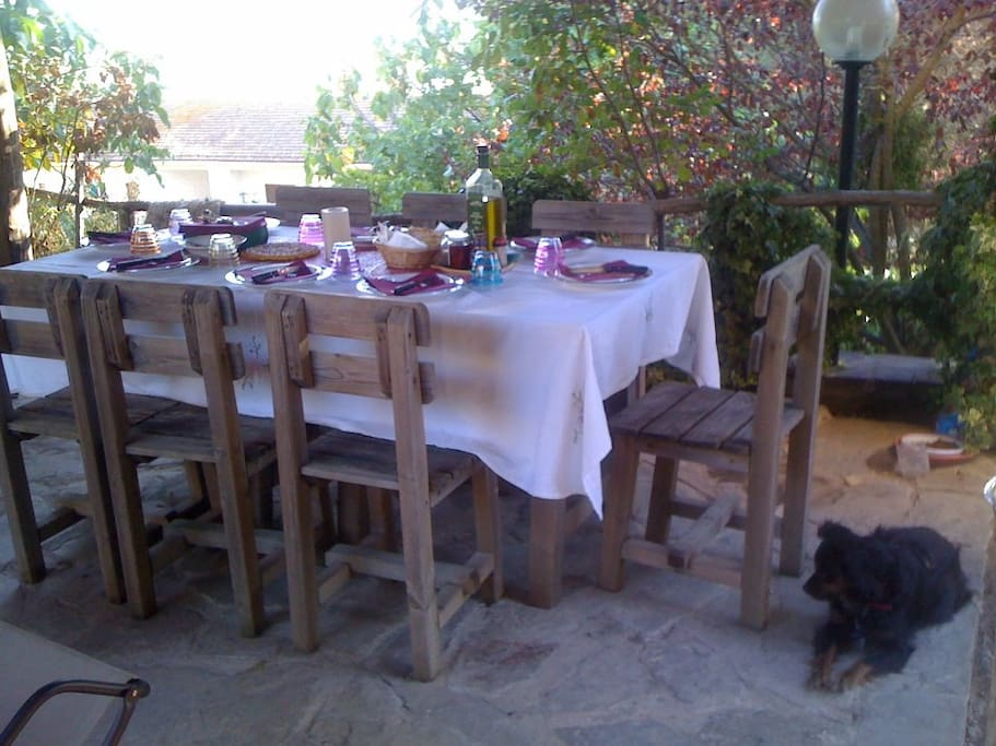 Pranzo all'aperto d'estate- Lunch outside on Summer
