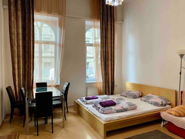 Comfortable room near city center
